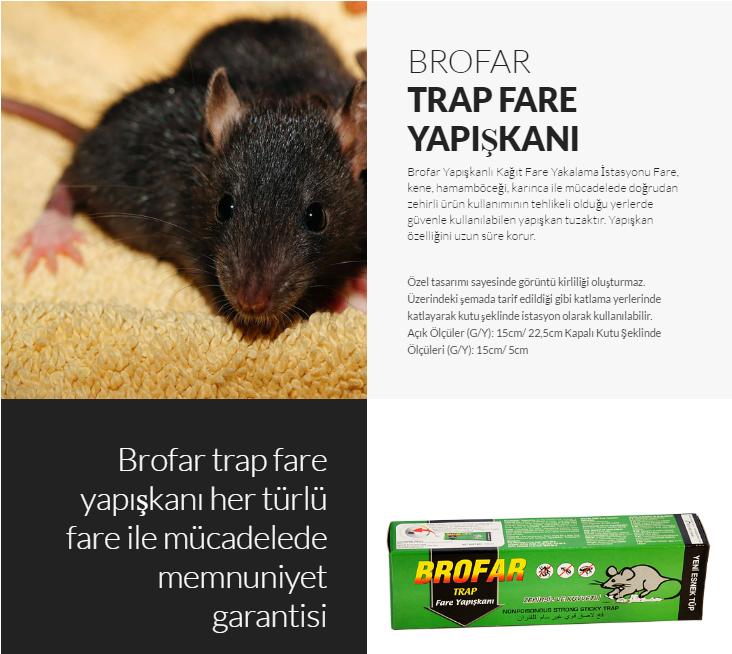 brofar-trap-fare-yapiskani